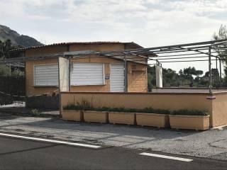 Immobile Affitto Maratea