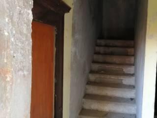 ingresso scale