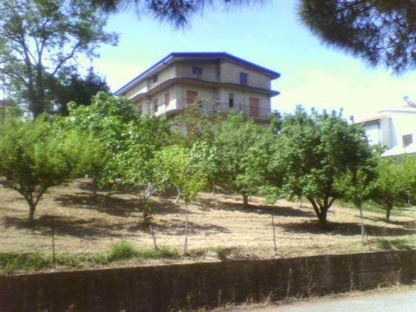 foto  Appartamento via Dante Alighieri, Francavilla Angitola