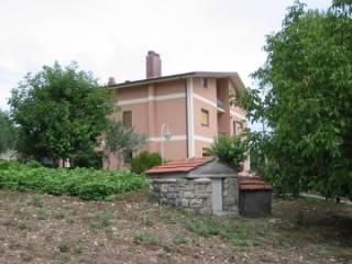 Foto - Casale Strada Statale 414, Casalbore