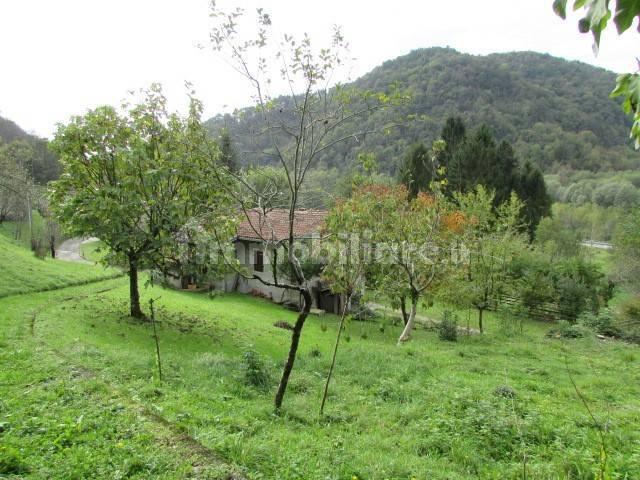 foto  Casale Località Rizoss, Castelnovo del Friuli