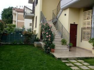 Foto - Quadrilocale via Sacconi, Maltignano
