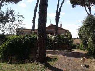 Photo - Farmhouse via dei Melograni 7, Genzano di Roma