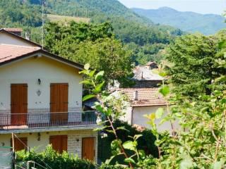 Foto - Villa unifamiliare Strada Provinciale Passo Zanchetto-Porretta Terme 106, Baigno, Camugnano
