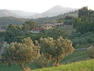 Attività / Licenza Vendita Castel Campagnano