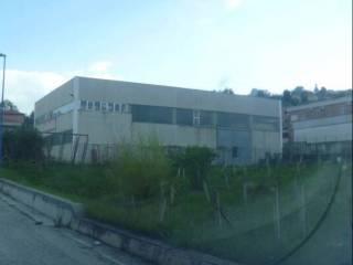 Foto - Terreno edificabile industriale a Mirabello Sannitico