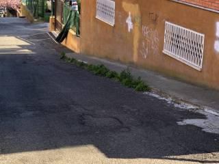 Photo - Cellar via Fausto Cecconi, Mentana