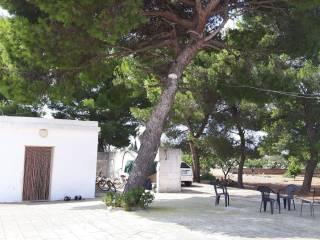 Foto - Casale via Rodi, Torricella