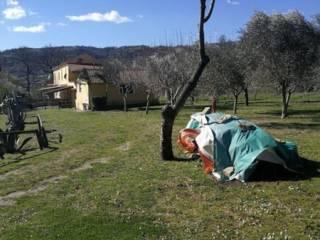 Foto - Rustico via Cerrina, Albanella