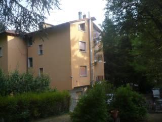 Foto - Trilocale Strada Provinciale -Zocca 27, Susano, Vergato