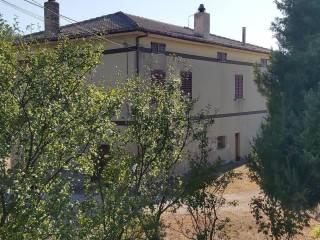 Foto - Casa colonica Borgo San Tommaseo, Montedinove