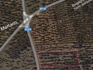 Foto - Terreno agricolo in Vendita a Carpignano Salentino