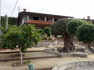 Foto - Quadrilocale via Filanda, Centro, Briatico