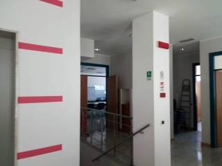 Immobile Affitto Ponzano Veneto