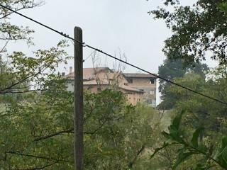 Palazzo / Stabile Vendita Castellarano