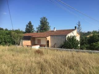 Foto - Casa colonica Contrada Calvario, Coste di Oratino, Calvario, Campobasso