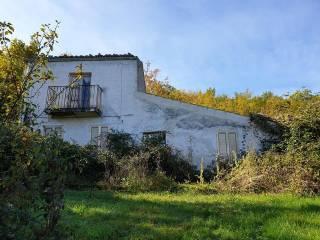 Foto - Casale corso Bertona, Montebello di Bertona