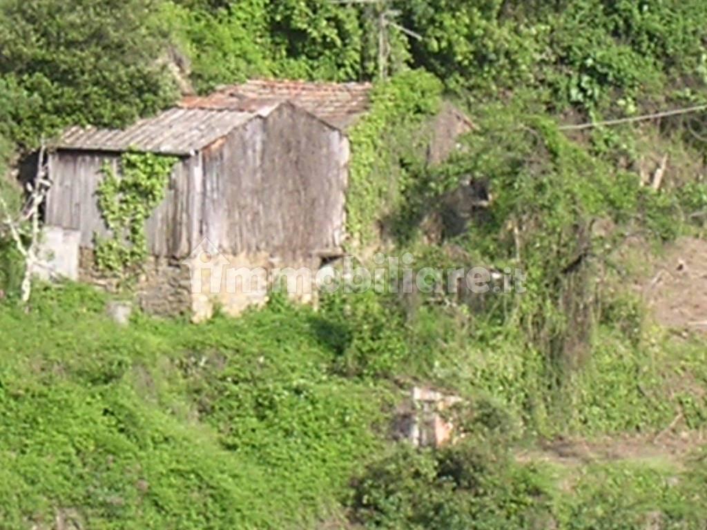 foto  Country house via Case Sparse Monte Vetta, Castel Vittorio