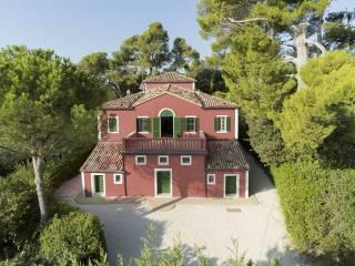 Foto - Villa unifamiliare Contrada Montali, Centro, Castelbellino