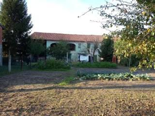 Photo - Dairy farm via Oviglio 50, Villa del Foro, Alessandria