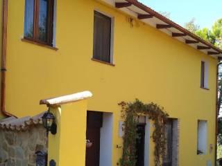 Foto - Villa unifamiliare Contrada Ammorto, Serra San Quirico
