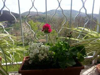 Foto - Bilocale via Passo Brasa 8, Castel d'Aiano