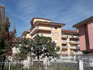Foto - Quadrilocale via Libero Testa, Centro, Isernia