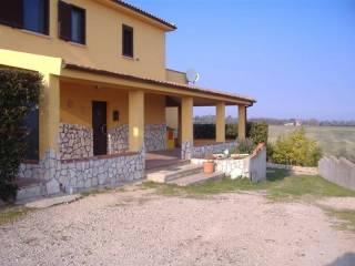 Foto - Villa unifamiliare Contrada Piano Crocetta, Petacciato
