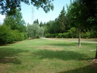 Foto - Villa unifamiliare, buono stato, 700 mq, Carmignano