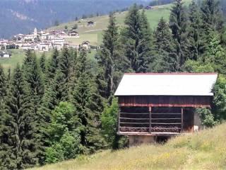 Foto - Casale, da ristrutturare, 150 mq, Costalissoio, Santo Stefano di Cadore