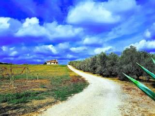 Photo - Villa indépendante Strada Provinciale dell'Abbadia, Canino