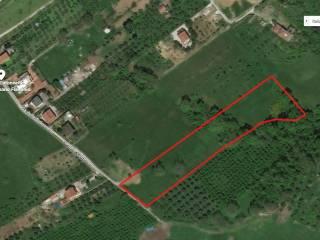 Foto - Terreno agricolo in Vendita a Rignano Flaminio