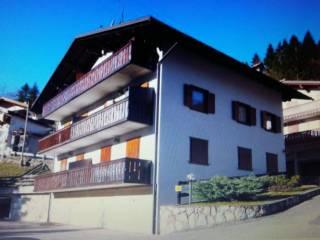 Foto - Trilocale frazione Avoscan 41, San Tomaso Agordino