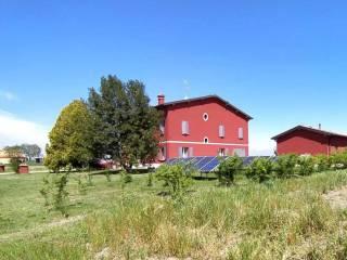 Foto - Casale via Villa Gardè 473, San Felice sul Panaro