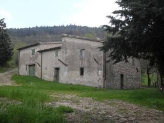 Foto - Terratetto plurifamiliare Località San Lorenzo in Torre Caselle, Urbania