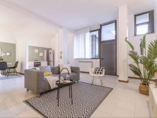 Piante Da Appartamento Vendita Milano.Ds9biphbxeoblm
