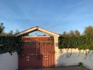 Foto - Villa unifamiliare Strada Vicinale di Grumo, Sannicandro di Bari