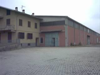 Immobile Vendita Castelletto d'Orba