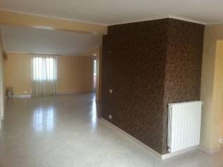 Foto - Appartamento via San Martino 14, Gallese