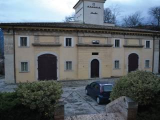 Palazzo / Stabile Vendita Torre de' Passeri