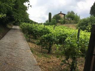Foto - Villa unifamiliare Località Madonna di Loreto 41, Tarzo