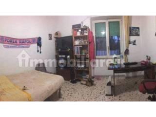 Foto - Stanza singola via Michele Tenore 17, Napoli