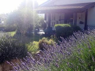 Foto - Villa bifamiliare via Gavetelle, Bucciano