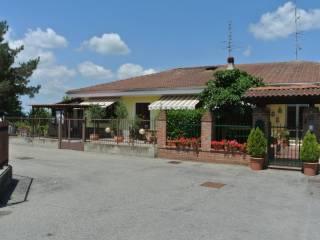 Foto - Villa unifamiliare via Nibbiola 27, Terdobbiate