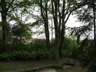 Photo - Two-family villa via Oriolo Romano 16A, Canale Monterano