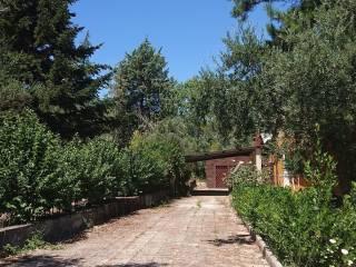 Foto - Villa unifamiliare Contrada Pianetto, Cerisano