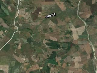Foto - Terreno agricolo in Vendita a Tufara