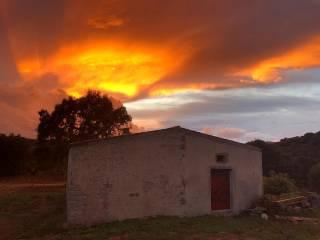 Foto - Villa unifamiliare - Olbia Costa Smerasldsa, Telti