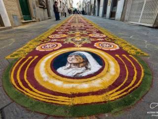 tappeto di segatura