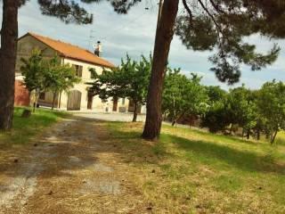 Foto - Appartamento via Roma 2, Monsano